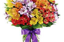 Какие цветы подарить девушке на день рождения?