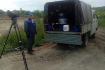 У очистных сооружений Барнаульского водоканала уничтожили дикорастущую коноплю