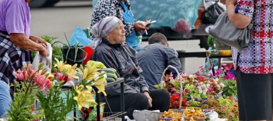 Эксперты рассказали о сценариях дальнейшего развития пенсионной реформы