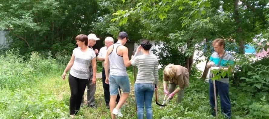 В барнаульском микрорайоне «Мирный» уничтожили очаги конопли