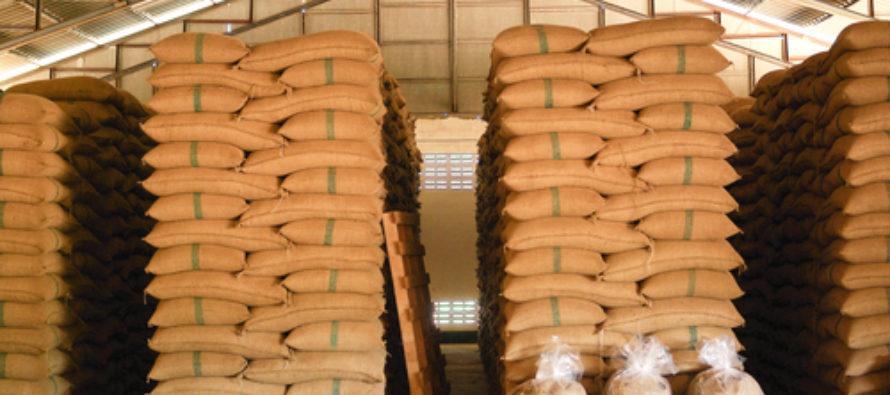 Технология хранения зерна: основные требования